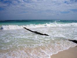 Vacaciones baratas a Playa del Carmen, México