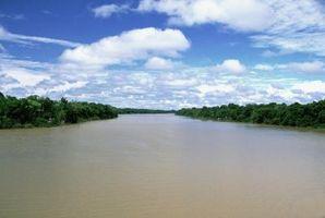 ¿Se puede utilizar RO Purificación de Agua para los peces tropicales?