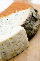 Diferentes tipos de salsas de queso