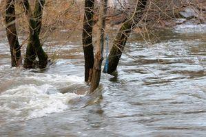 ¿Cuáles son algunos desastres naturales que ocurren en el suroeste?