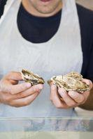 Maneras de preparar las ostras