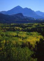 Viajes Alaska Wilderness