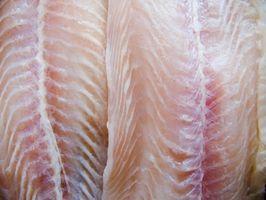 Cómo filetear un pescado Bacalao Negro