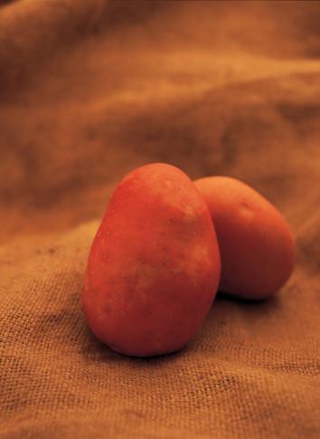 Cocinar las patatas rojas