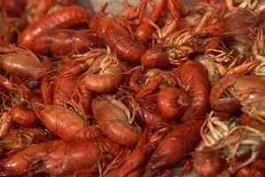 Cómo cocinar los cangrejos en un fuego abierto
