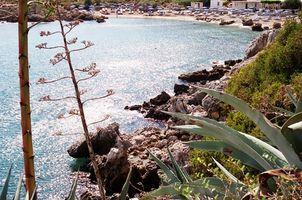 Seabourn Odyssey Cruises