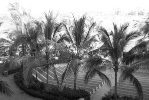 El Mayan Resorts en Nuevo Vallarta