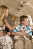 Las listas de verificación de viaje para niños