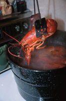 Cómo abrir una grieta en una cola de langosta cocinada