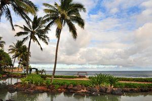 Hawaii boda centros turísticos con paquetes todo incluido