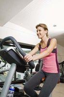 ¿Qué deben hembras desgaste de entrenamiento?