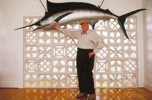 ¿Cuál es la diferencia entre un pez vela y un pez espada?