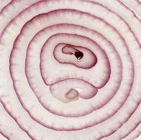 Como parte del peso de una cebolla se pierde de cocinar?