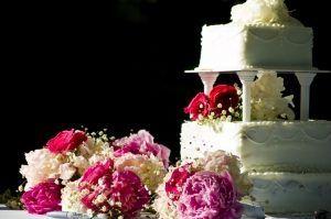 Cómo decorar la comida con los Flores Frescas