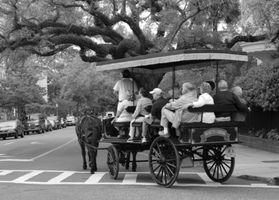 Turismo Sur de Carolina y guía del recorrido