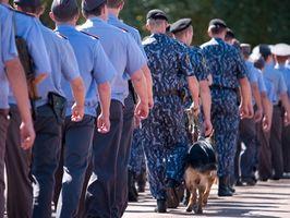 Entrenamiento del perro de policía profesional
