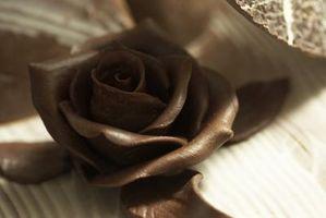 ¿Se puede utilizar ganache de las rosas de tuberías?