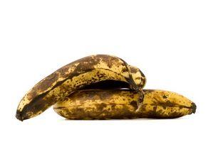 Cómo hacer pan de plátano del plátano Copia versión del gato de Bob Evan