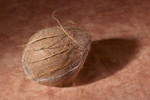 Cómo hacer Loción De aceite de coco