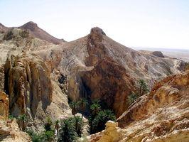 ¿Cuáles son las condiciones de vida Al igual que en los desiertos?