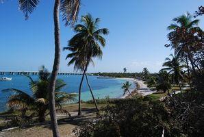 Hoteles en Cayo Hueso, Florida