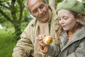 Se pueden congelar zumo de pera fresca?