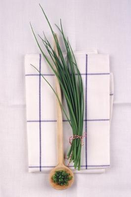 Los sustitutos para las cebollas verdes