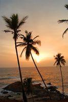 Singles vacaciones en la playa