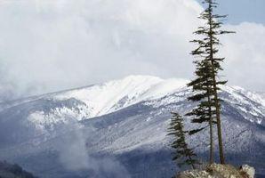 Condiciones de la nieve en las Montañas Rocosas
