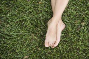 El uso de zapatos puede todo el tiempo ser perjudicial a sus pies?