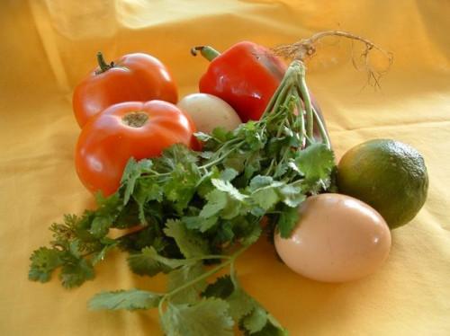 Forma de guardar cilantro fresco