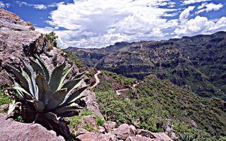 Viajes en tren por el Cañón del Cobre en México