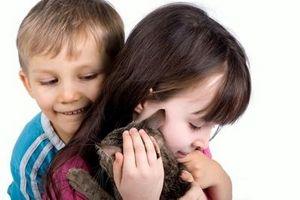 Los parásitos en los gatos y seres humanos