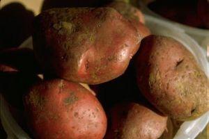 Las patatas rojas a la parrilla en hoja