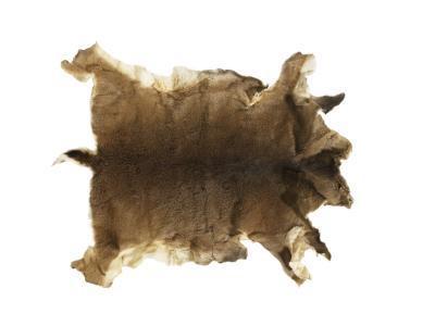 Cómo hacer un par de pantalones Fuera de la piel del ciervo