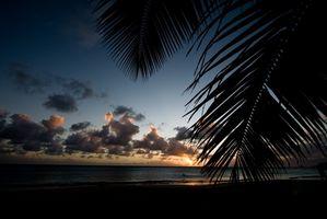 Actividades en las Islas del Caribe