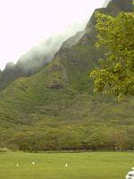 ¿Cuál es la forma más barata de volar a Hawai?
