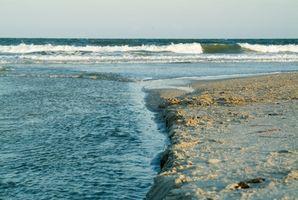 Hoteles frente al mar en la playa de Carolina