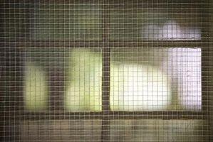Cómo proteger la pantalla de arañazos puerta para mascotas
