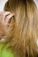 Cómo utilizar una maquinilla de afeitar Jilbere Peine