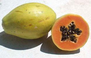 Cómo utilizar la papaya en Tratamientos faciales