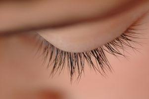 Cómo aplicar las pestañas falsas Así ojos se vean Wide Open