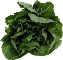Cómo cocinar Espinacas para que se ponga verde clara