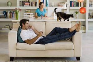 Cómo tratar el estreñimiento felino Con aceite de ricino