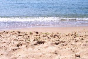 Cerca de las playas públicas Salvo, Carolina del Norte