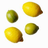 Cómo hacer limón y Limeade Puñetazo