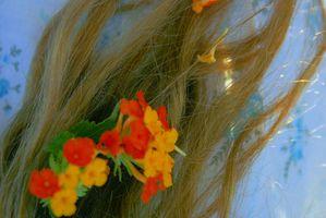 Vegetal Seguridad tinte de pelo