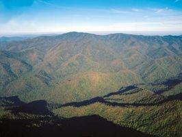 Día de Carolina del Norte libre Trips
