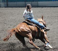Cómo construir bases caballo doblez del polo