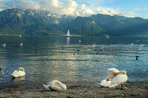 Recorridos en el lago de Ginebra, Suiza